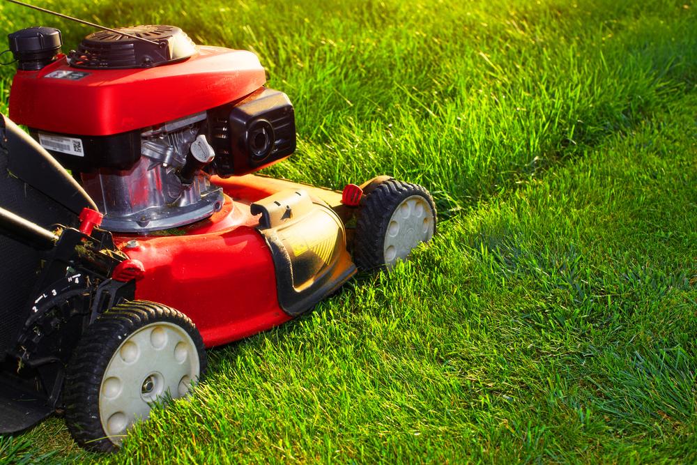 Tips voor het verzorgen van gras in de tun