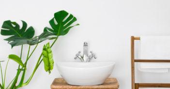 Pak uit met planten in de badkamer