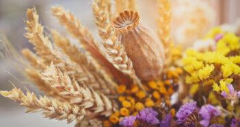 Mooi: speel met kleurrijke bloemen in je interieur