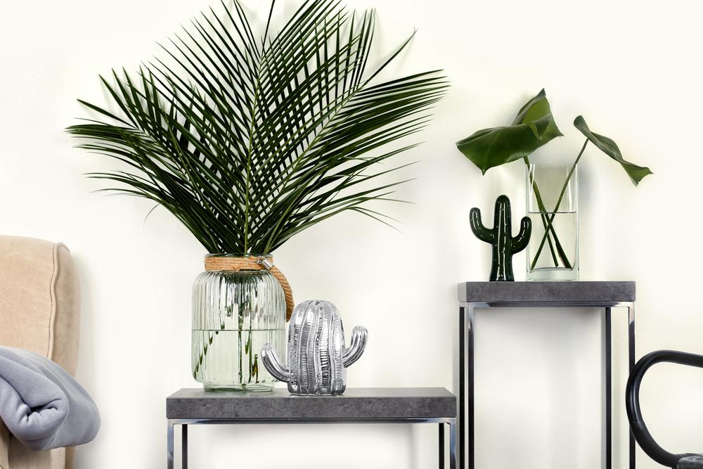 Planten als tropische accessoires in huis