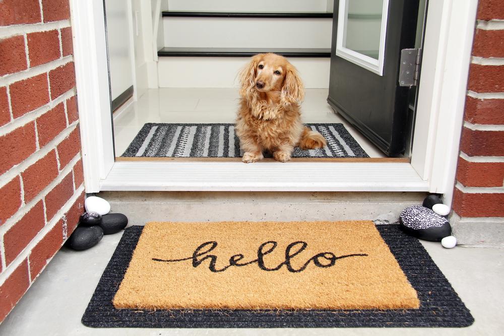 Een nieuwe deurmat kopen: lees onze handige tips