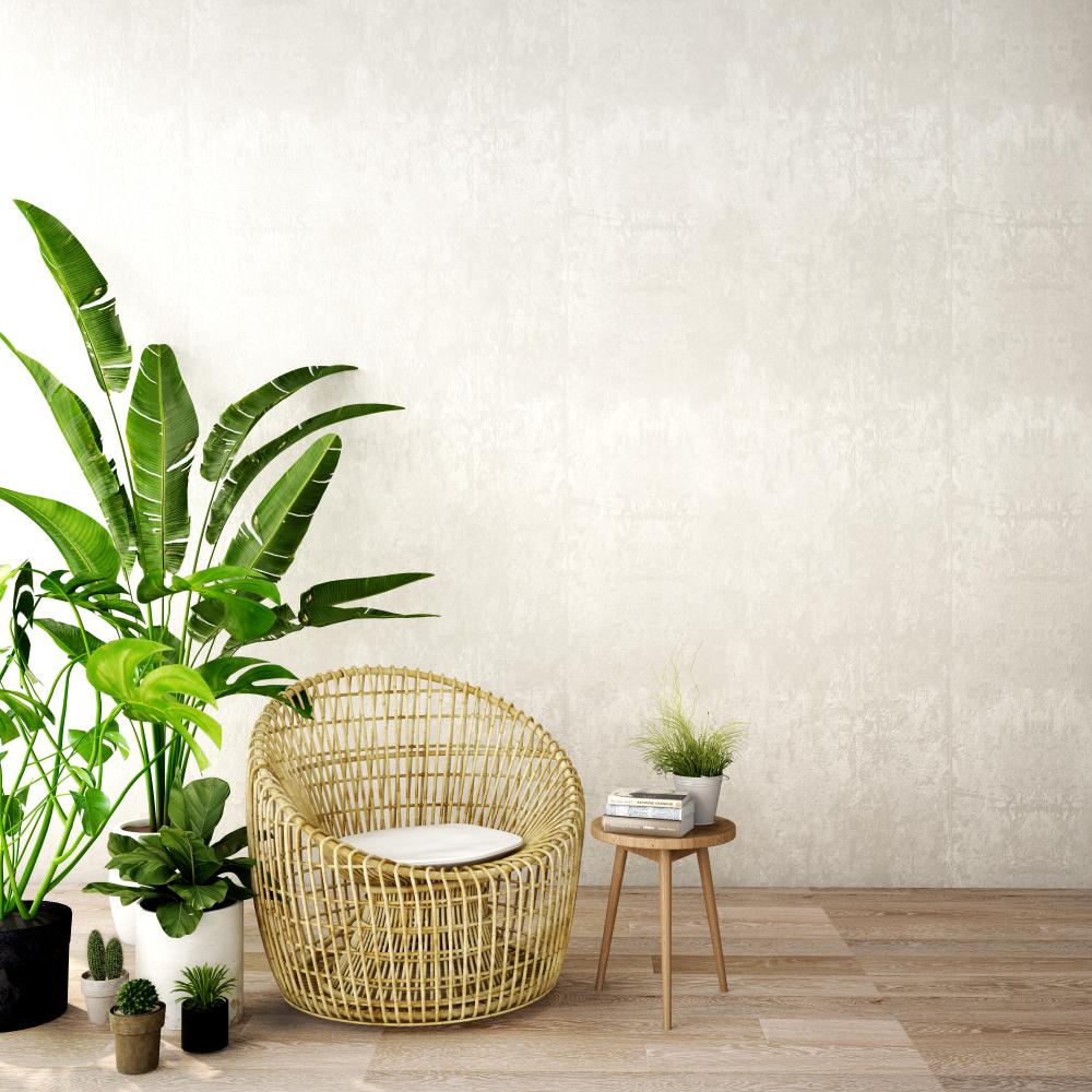 Bamboe in huis in de zithoek