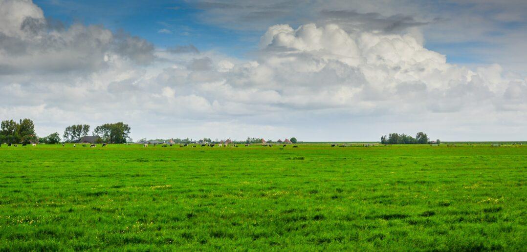 6 redenen om naar Zeeuws-Vlaanderen te verhuizen