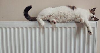 Is je radiator een doorn in het oog Op deze manieren niet!